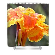 Gentle Awakening Shower Curtain