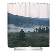 Gentle Morning Shower Curtain