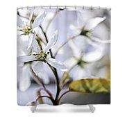 Gentle White Spring Flowers Shower Curtain