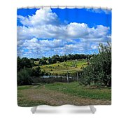 George Hill Orchard Shower Curtain