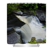 George W Childs Park Waterfall Shower Curtain