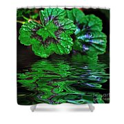 Geranium Leaves - Reflections On Pond Shower Curtain
