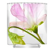 Geranium Pink Shower Curtain