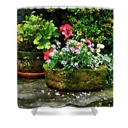 Geraniums And Lavender Flowers On Stone Steps Shower Curtain