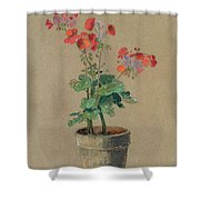 Geraniums In A Pot  Shower Curtain