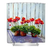 Geraniums On My Balcony Shower Curtain