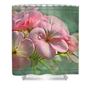 Geraniums With Texture Shower Curtain