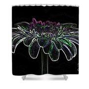 Gerbera Glow 4 Shower Curtain