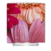 Gerbera Impressions Shower Curtain
