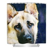 German Shepherd - Soul Shower Curtain