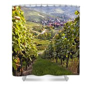 German Vineyard Shower Curtain