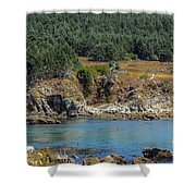 Gerstle Beach Shower Curtain