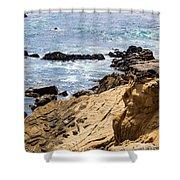 Gerstle Coastline Shower Curtain