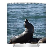 Get My Good Side.... Shower Curtain