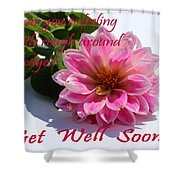 Get Well Soon - Louise Dahlia - Pink Flower Shower Curtain