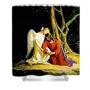 Gethsemane Shower Curtain