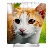Getting Ready For The Hunt Shower Curtain
