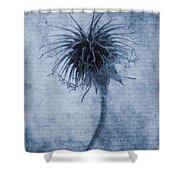 Geum Urbanum Cyanotype Shower Curtain