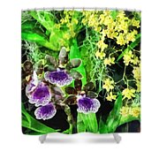 Geyser Jaimie And Golden Fantasy Orchids Shower Curtain