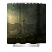Ghost Horses Shower Curtain