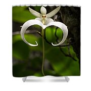 Ghost Orchid 2 Shower Curtain