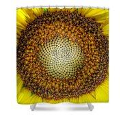 Ghost Sunflower Shower Curtain