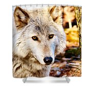 Ghost Wolf Shower Curtain