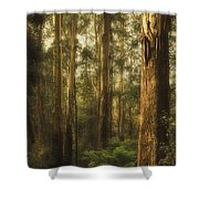Ghostly Shower Curtain by Andrew Paranavitana