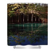 Ghostly Quiet Shower Curtain