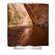 Giant Alcove Coyote Gulch - Utah Shower Curtain