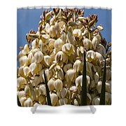 Giant Bloom Shower Curtain