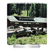 Giant Forest Museum Shower Curtain