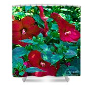 Giant Poppies Shower Curtain