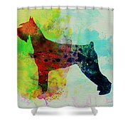 Giant Schnauzer Watercolor Shower Curtain by Naxart Studio