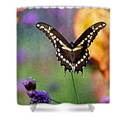 Giant Swallowtail Butterfly Photo-painting Shower Curtain