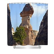Giant Toadstool Shower Curtain