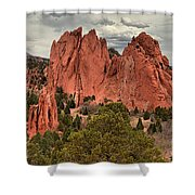 Giants Among The Trees Shower Curtain