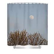 Gibbous Nature Shower Curtain