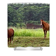 Giddy Up Horsy By Diana Sainz Shower Curtain
