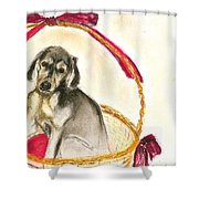 Gift Basket Shower Curtain