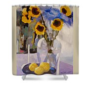 Gifts Of The Sun Shower Curtain