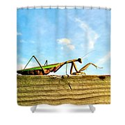 Gigantor Shower Curtain
