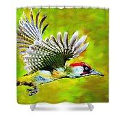 Gila Woodpecker Shower Curtain