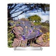 Gilcrease House Garden Flower Shower Curtain by Tamyra Ayles