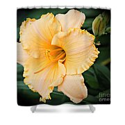 Gild The Lily Shower Curtain