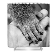 Gimme Five Shower Curtain