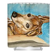 Ginger 2013 Shower Curtain