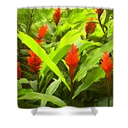 Ginger Shower Curtain
