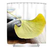Ginkgo Leaf  Shower Curtain