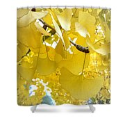 Ginko Tree Shower Curtain